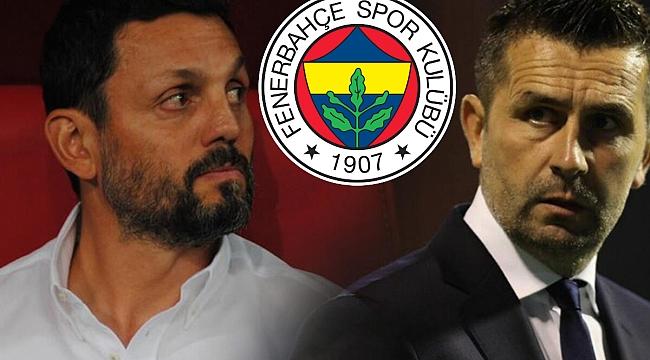 Erol Bulut, Bjelica ve Fenerbahçe üçgeni