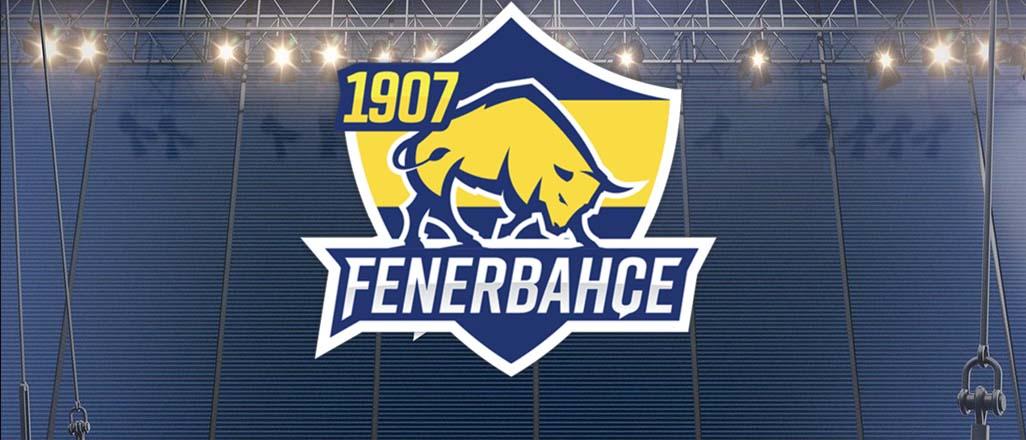 Fenerbahçe eSpor Takımı'nın bilinmeyenleri